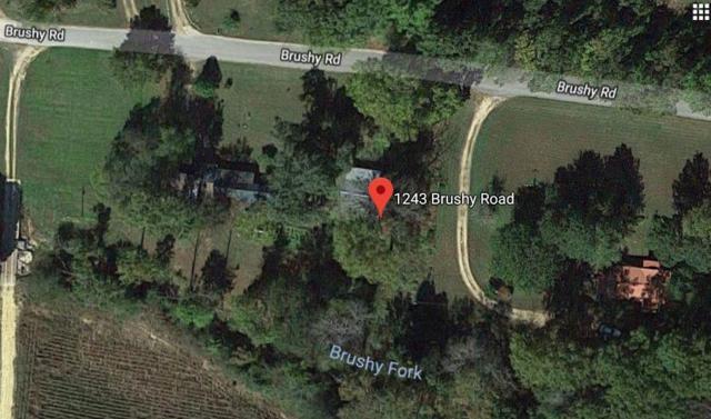 1243 Brushy Rd, Centerville, TN 37033 (MLS #1942550) :: REMAX Elite