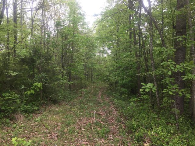 0 Hance Hollow Rd, Red Boiling Springs, TN 37150 (MLS #1942586) :: REMAX Elite