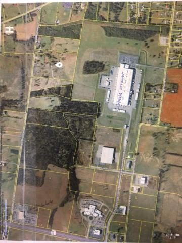 222 Harts Chapel Rd, Shelbyville, TN 37160 (MLS #1942859) :: Maples Realty and Auction Co.