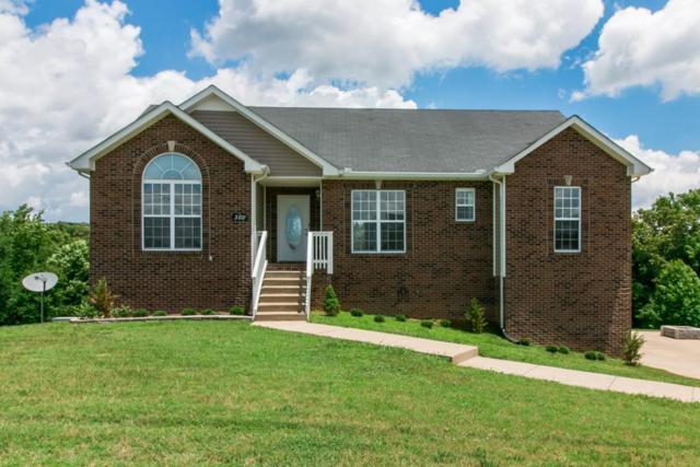 388 Todd Phillips Trail, Clarksville, TN 37042 (MLS #1944335) :: Nashville On The Move