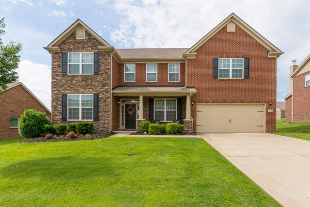 1003 Mayhaw Ln, Hendersonville, TN 37075 (MLS #1945127) :: Ashley Claire Real Estate - Benchmark Realty