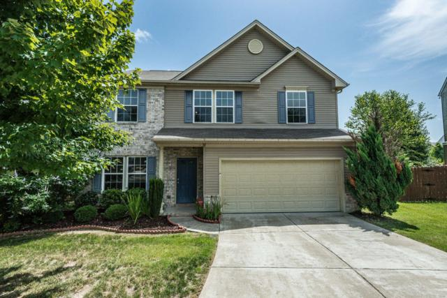 508 Lyndeboro Ct, Nashville, TN 37221 (MLS #1945332) :: The Milam Group at Fridrich & Clark Realty
