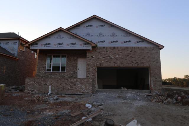 704 Green Meadow Lane Lot 45, Smyrna, TN 37167 (MLS #1947836) :: REMAX Elite