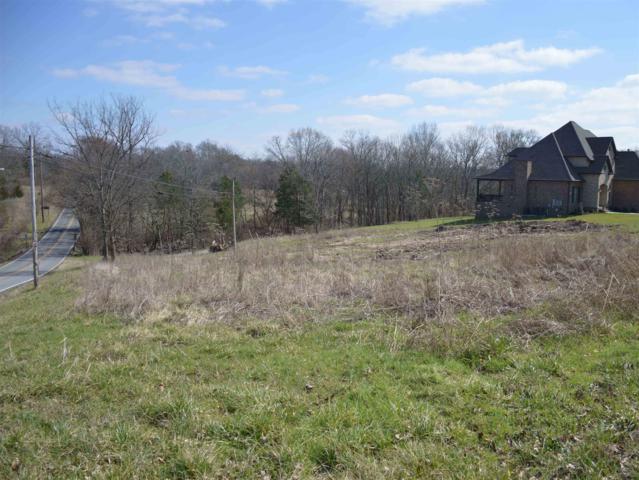 107 Avondale Access Rd, Hendersonville, TN 37075 (MLS #1948877) :: John Jones Real Estate LLC