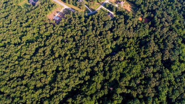0 Bonner Way, Estill Springs, TN 37330 (MLS #1948902) :: The Milam Group at Fridrich & Clark Realty