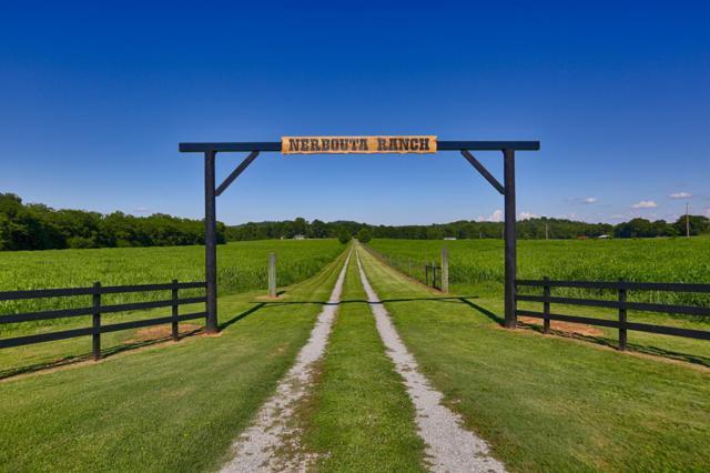 170 March Mill Rd, Fayetteville, TN 37334 (MLS #1949773) :: REMAX Elite