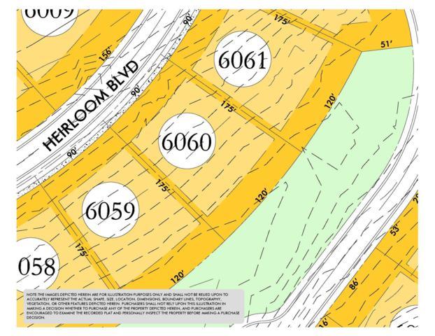 8416 Heirloom Blvd (Lot 6060), College Grove, TN 37046 (MLS #1951006) :: CityLiving Group