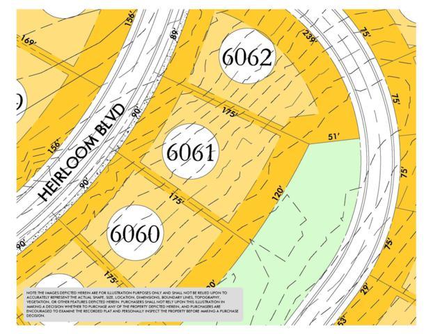 8412 Heirloom Blvd (Lot 6061), College Grove, TN 37046 (MLS #1951007) :: CityLiving Group
