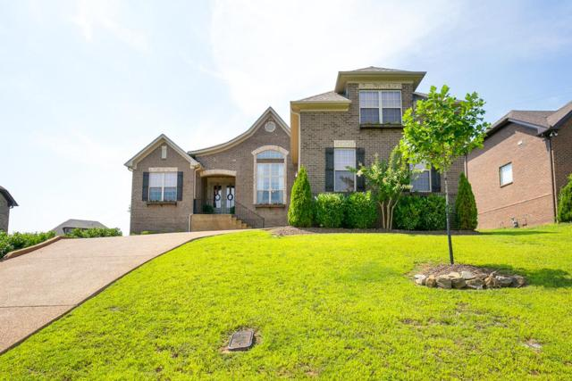 149 Brierfield Way, Hendersonville, TN 37075 (MLS #1951102) :: Ashley Claire Real Estate - Benchmark Realty