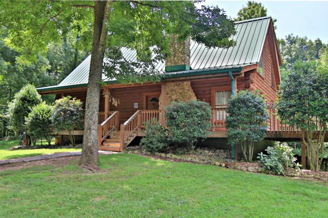 1155 Cardinal Trl, Columbia, TN 38401 (MLS #1951308) :: REMAX Elite