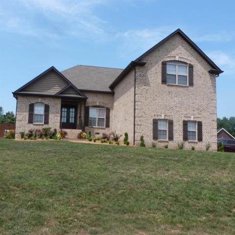 101 Crystal Ct, White House, TN 37188 (MLS #1951337) :: RE/MAX Choice Properties
