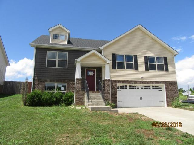 700 Banister Ln, Clarksville, TN 37042 (MLS #1951867) :: Ashley Claire Real Estate - Benchmark Realty