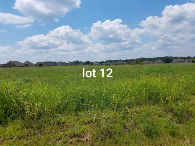 1026 Rhonda Dr, Christiana, TN 37037 (MLS #1952366) :: John Jones Real Estate LLC