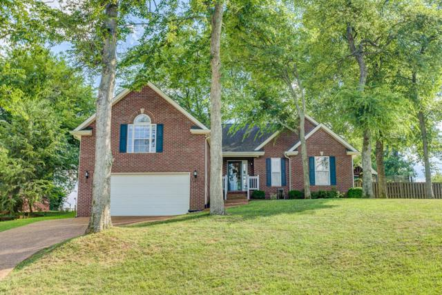 1909 Hamelton Cir, Spring Hill, TN 37174 (MLS #1952506) :: The Easling Team at Keller Williams Realty