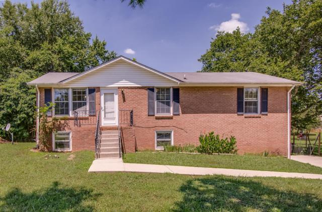 847 Raines St, Smyrna, TN 37167 (MLS #1953055) :: Armstrong Real Estate