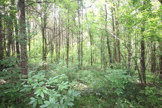 1046 Parsons Private Way Lot 3, Hendersonville, TN 37075 (MLS #1953298) :: Nashville on the Move