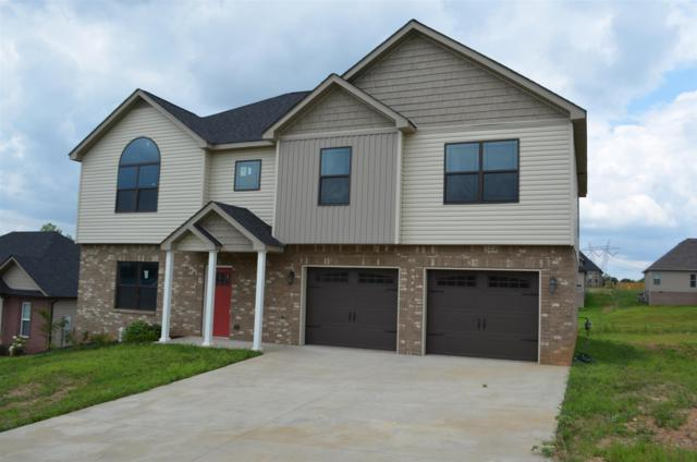 660 Superior Ln, Clarksville, TN 37043 (MLS #1953376) :: The Kelton Group