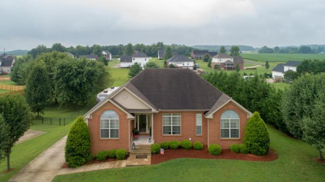 3016 Joey Ct, Pleasant View, TN 37146 (MLS #1953739) :: Nashville On The Move