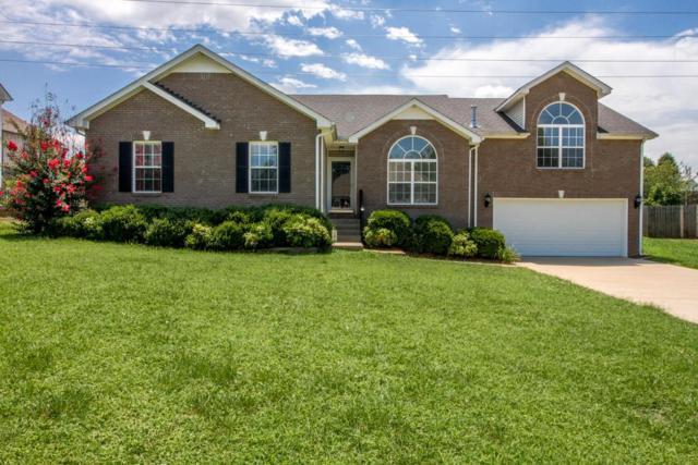 3142 Holly Pt, Clarksville, TN 37043 (MLS #1954755) :: John Jones Real Estate LLC