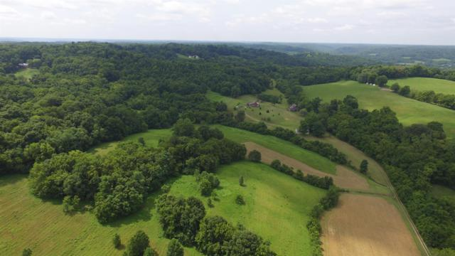4113 Old State Rd, Hampshire, TN 38461 (MLS #1954766) :: REMAX Elite