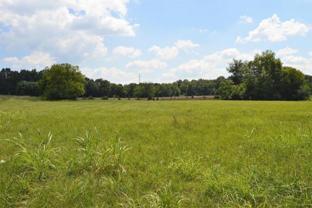 1479 New Columbia Hwy, Lewisburg, TN 37091 (MLS #1954781) :: The Kelton Group