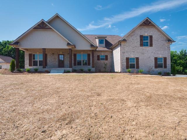 3076 Wedgewood, Greenbrier, TN 37073 (MLS #1955522) :: Nashville On The Move