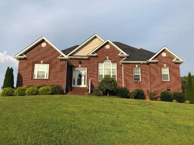 165 Wayne Threatt Rd, Dover, TN 37058 (MLS #1956223) :: Ashley Claire Real Estate - Benchmark Realty