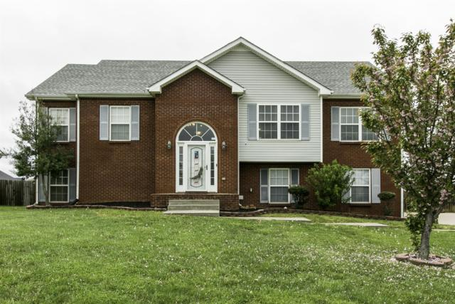 3176 Twelve Oaks Blvd, Clarksville, TN 37042 (MLS #1957798) :: Group 46:10 Middle Tennessee