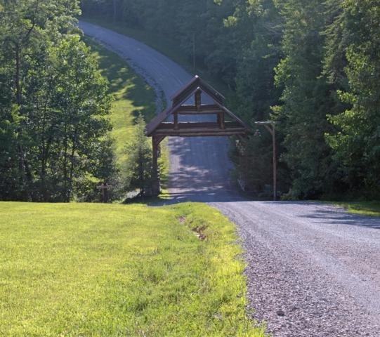 0 Long Branch Rd. Lot 10, Spencer, TN 38585 (MLS #1959024) :: RE/MAX Homes And Estates