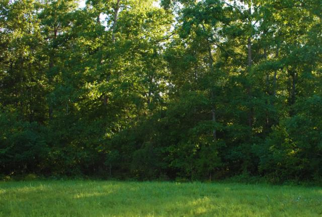0 Camp Creek Dr Lot 114, Spencer, TN 38585 (MLS #1959098) :: RE/MAX Homes And Estates