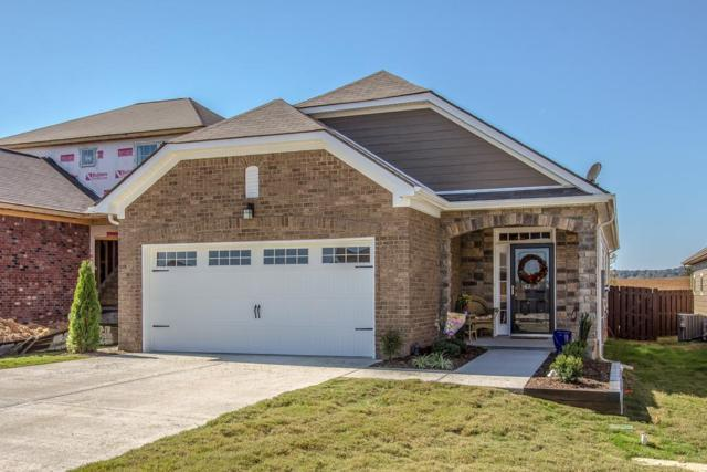 2524 Hanover Drive, Columbia, TN 38401 (MLS #1960230) :: John Jones Real Estate LLC
