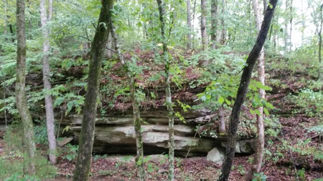 0 Old Sams Creek Rd-Lot 568, Pegram, TN 37143 (MLS #1960690) :: Christian Black Team