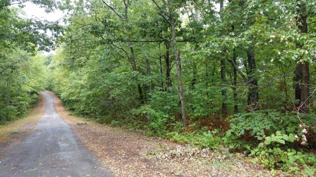 0 Paiute Trl-Lot 517, Pegram, TN 37143 (MLS #1960693) :: Fridrich & Clark Realty, LLC