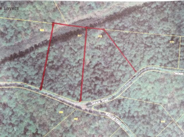0 Sioux Trl-Lot 518, Pegram, TN 37143 (MLS #1960695) :: REMAX Elite