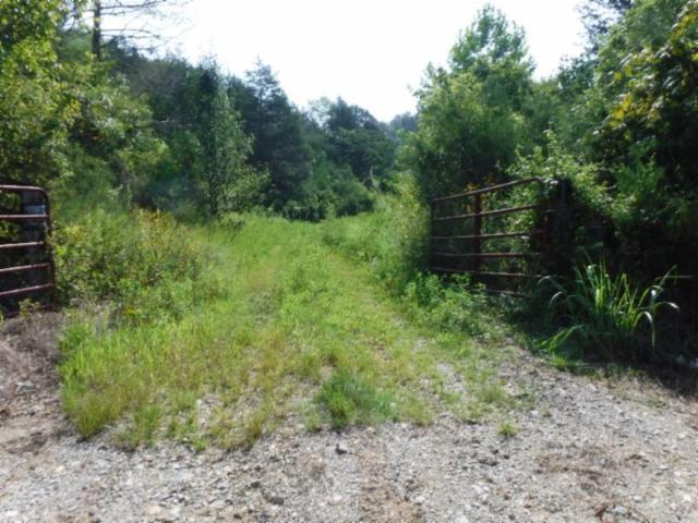 34 Ac East Raft Road, Burkesville, KY 42717 (MLS #RTC1961239) :: Keller Williams Realty