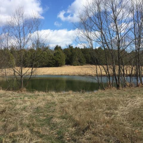 8285 Haley Rd, College Grove, TN 37046 (MLS #1961379) :: RE/MAX Homes And Estates