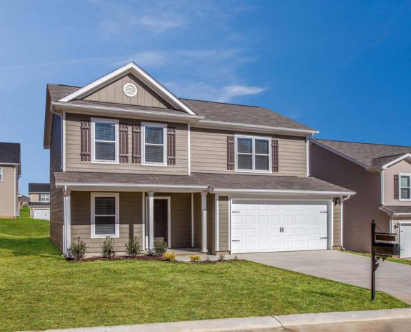 2527 Queen Bee Dr, Columbia, TN 38401 (MLS #1961668) :: DeSelms Real Estate