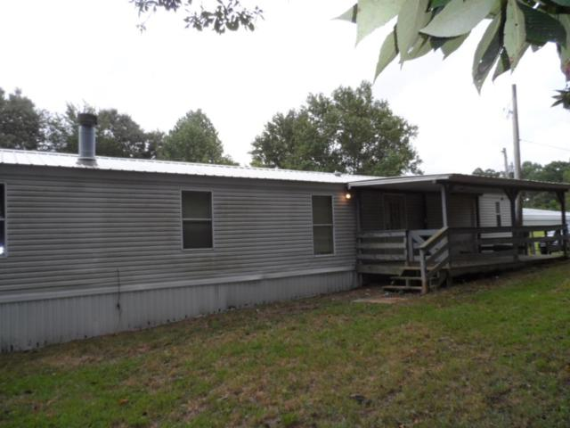 259 Clyde Webb Rd, Tennessee Ridge, TN 37178 (MLS #1962196) :: Team Wilson Real Estate Partners