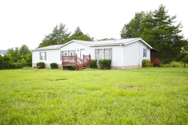 6162 Dug Hollow Rd, Bradyville, TN 37026 (MLS #1962282) :: Maples Realty and Auction Co.