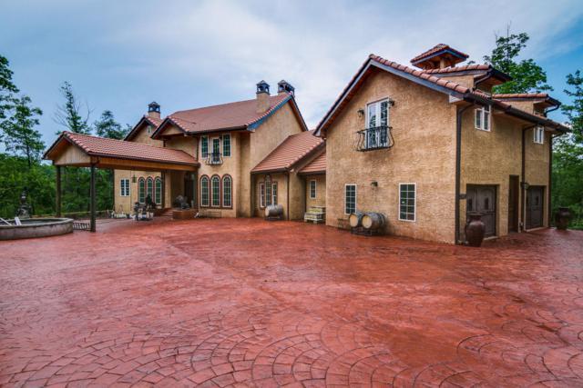 1143 Moss Bend Trail, Monterey, TN 38574 (MLS #1963009) :: John Jones Real Estate LLC