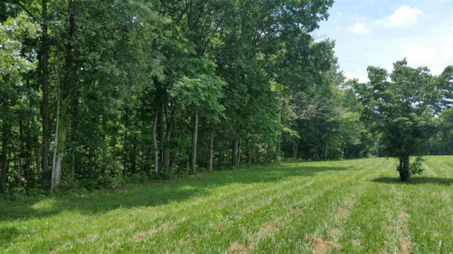 6 Liberty Rd - Lot #6, Fairview, TN 37062 (MLS #1963265) :: The Helton Real Estate Group