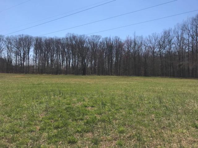 10 Green Meadow Dr, Smithville, TN 37166 (MLS #1963651) :: Nashville On The Move