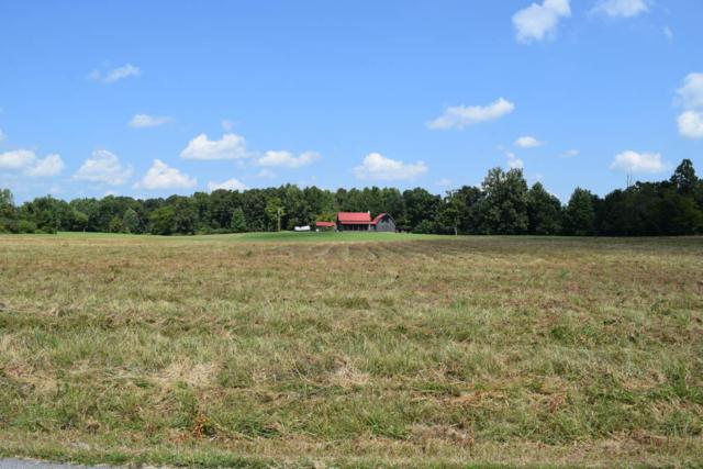 137 Mount Vernon Church Rd, Bethpage, TN 37022 (MLS #1965338) :: DeSelms Real Estate