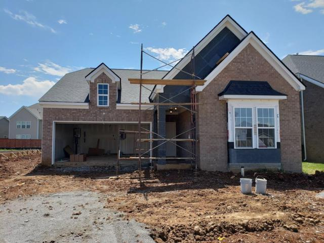 3247 Amaranth Avenue (Lot 190), Murfreesboro, TN 37128 (MLS #1966046) :: DeSelms Real Estate