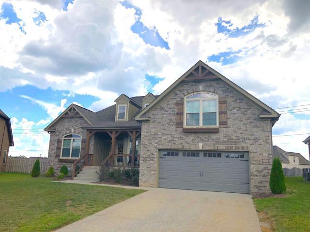 8011 Ragusa Circle, Spring Hill, TN 37174 (MLS #1966393) :: DeSelms Real Estate