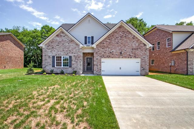 506 Ruby Oaks Lane- Lot 11, Murfreesboro, TN 37128 (MLS #1966467) :: CityLiving Group