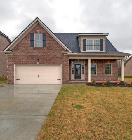 534 Ruby Oaks Lane- Lot 4, Murfreesboro, TN 37128 (MLS #1966479) :: CityLiving Group