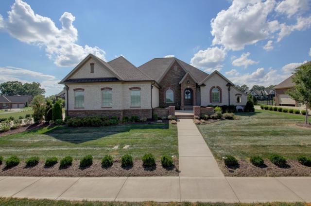 1488 Overlook Pointe, Clarksville, TN 37043 (MLS #1966482) :: DeSelms Real Estate