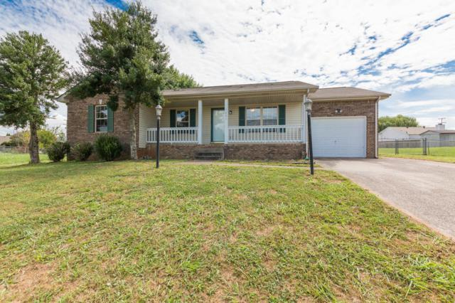 1221 Crystal Dr, Clarksville, TN 37042 (MLS #1966804) :: Exit Realty Music City