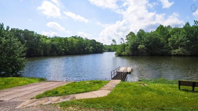 307 Cedar Hollow Ct - Lot 19, Lebanon, TN 37087 (MLS #1966838) :: RE/MAX Choice Properties